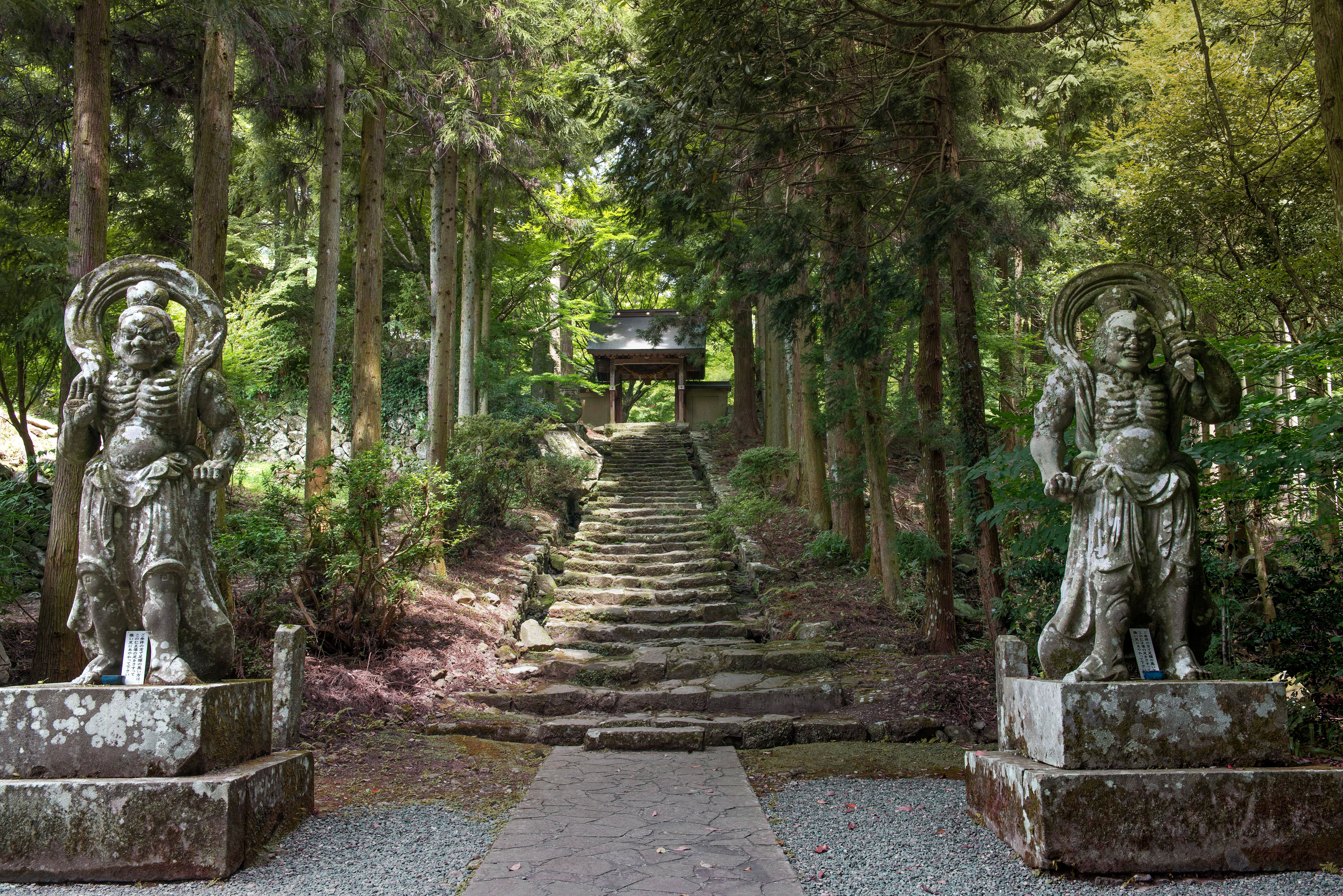 Kunisaki Into A World Of Moss And Stone The Japan Times