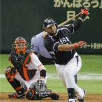 Hit parade: Mauro Gomez finishes with three of the Tigers' 19 hits on Friday night against the Giants at Tokyo Dome. Hanshin defeated Yomiuri 12-5.  | KYODO