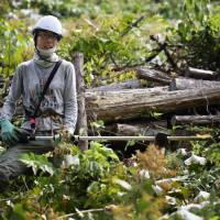 Women armed with chain saws head to the hills under Abe's growth plan