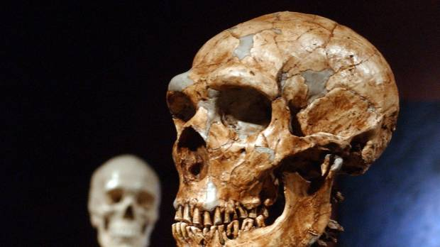 Neanderthals and humans had thousands of years to mix, have sex