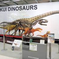 Fukui hopes to boost tourism with a bounty of dinosaur fossils