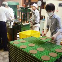 Wakayama firm puts old twist on mosquito coils