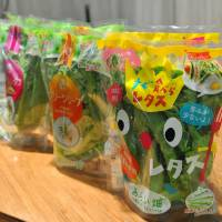 Leafy vegetables that were grown in Mirai Co.'s factory in Kashiwanoha, Chiba Prefecture, are packaged and displayed in June. | YOSHIAKI MIURA