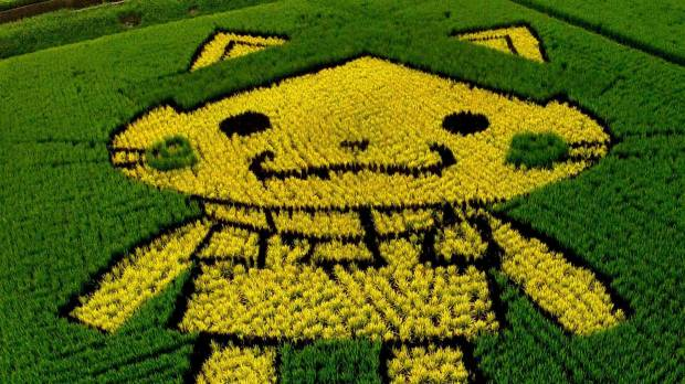 Shimane mascot boasts rice paddy art