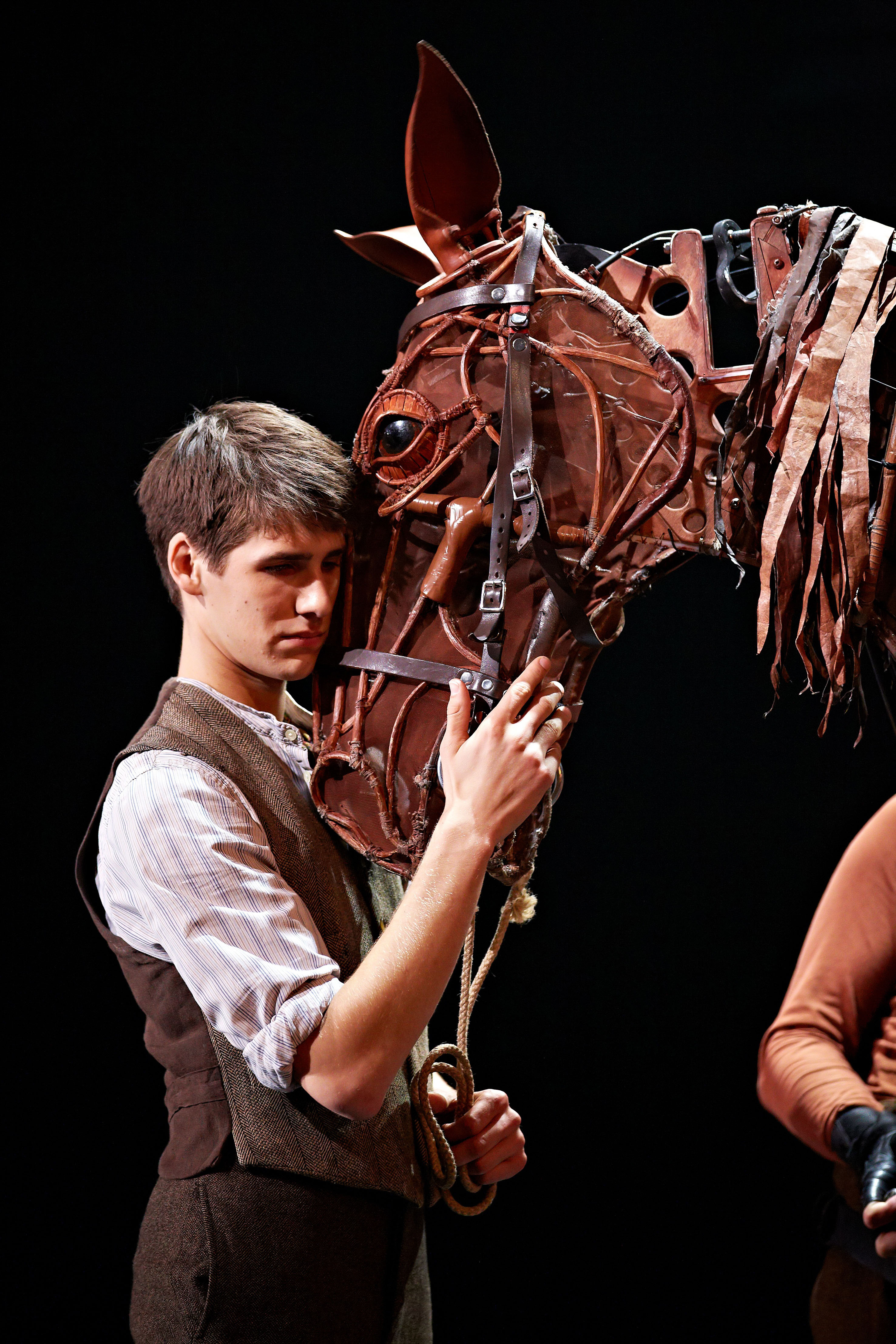 war horse book report War horse vocabulary book summary joey, a half-thoroughbred colt, begins the story with a time for students to report on their research, accompany.