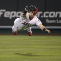 Going horizontal: Los Angeles Angels right fielder Kole Calhoun dives to catch a ball against the Dodgers on Wednesday night. | AP