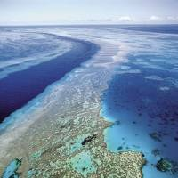 Aussie plan to protect Great Barrier Reef under fire from environmentalists