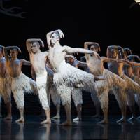 Birds of a feather: The trail-blazing all-male corps of white swans strut their stuff in 'Matthew Bourne's Swan Lake.'