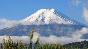 Frosted Fuji