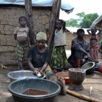 Pygmies, Bantus flee war over tryst in Democratic Republic of Congo