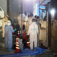 Yamaguchi bird flu outbreak third case confirmed in Japan this winter