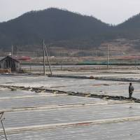 Escaped slave recalls 'living hell' on remote South Korean islands