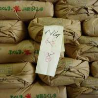 All 2014 Fukushima rice cleared radiation tests, thanks to fertilizer