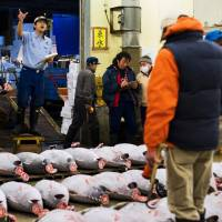 Bluefin tuna goes for ¥4.51 million in Tsukiji's first auction of year