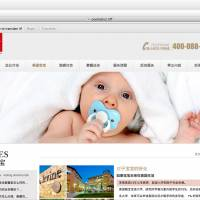 Agents target industry helping Chinese women have U.S. babies