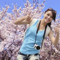 Cherry blossom season sees another Chinese shopping spree in Japan