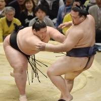 Takarafuji falls short against mighty Hakuho