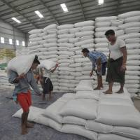 Despite obstacles, Myanmar farmers dream of resurrecting Asia's rice bowl