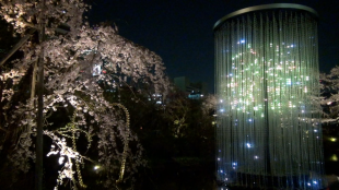 [VIDEO] teamLab's Crystal Fireworks and cherry blossoms at Roppongi Hills