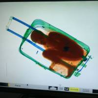 Boy, 8, found inside suitcase at Spain border crossing