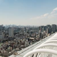 Get up high to see how the past has shaped present-day Tokyo
