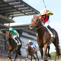Favorite Duramente wins Japanese Derby in record time