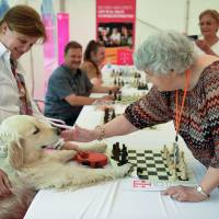 Hungary grandma pensioner, 87, sets simultaneous chess world record