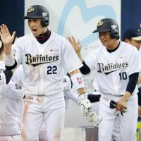 Buffaloes use 16-hit attack to pummel Tigers