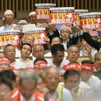 Japanese farmers urge government to protect key items before TPP talks