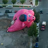 Inflated head in pig-shaped balloon 'saved pilot's bacon' in Utah crash