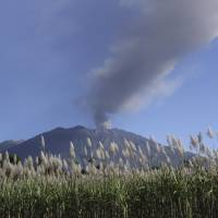 Bali closes airport due to volcano, stranding thousands of vacationers