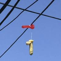 Hundreds of sex toys found dangling from power lines in Portland, Oregon