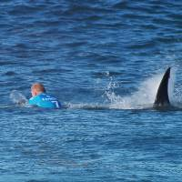 Surfer fights off shark during televised competition in South Africa