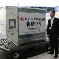 Centrair emerges as key freight hub for agricultural exporters