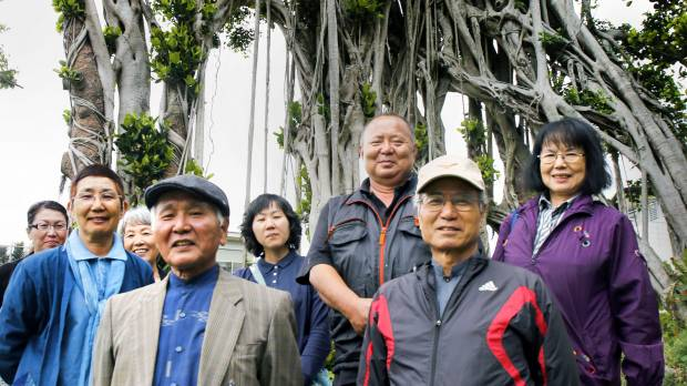 How an old banyan tree kept a WWII soldier alive
