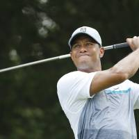 Tiger stays calm with season on line