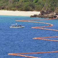 Okinawa launches coral survey at Futenma replacement site