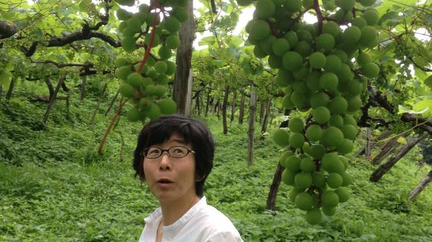 Natural wine is a natural fit in Tokyo