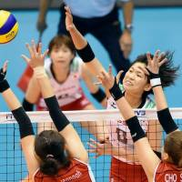 Japan spikers in control against South Korea