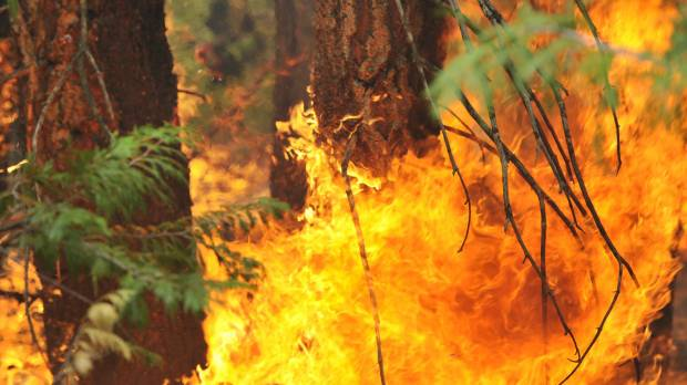 Cost of fighting U.S. wildfires could set a record