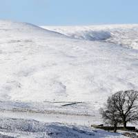 Snow big deal as Scots just let it 'snaw' in 'spitters'