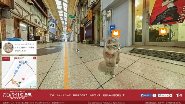 Hiroshima eyes tourist boost with cat's-eye view of city streets