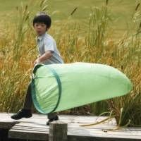Prince Hisahito, third in line to throne, turns 9