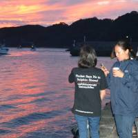 Season's first dolphin hunt in Taiji ends unsuccessfully