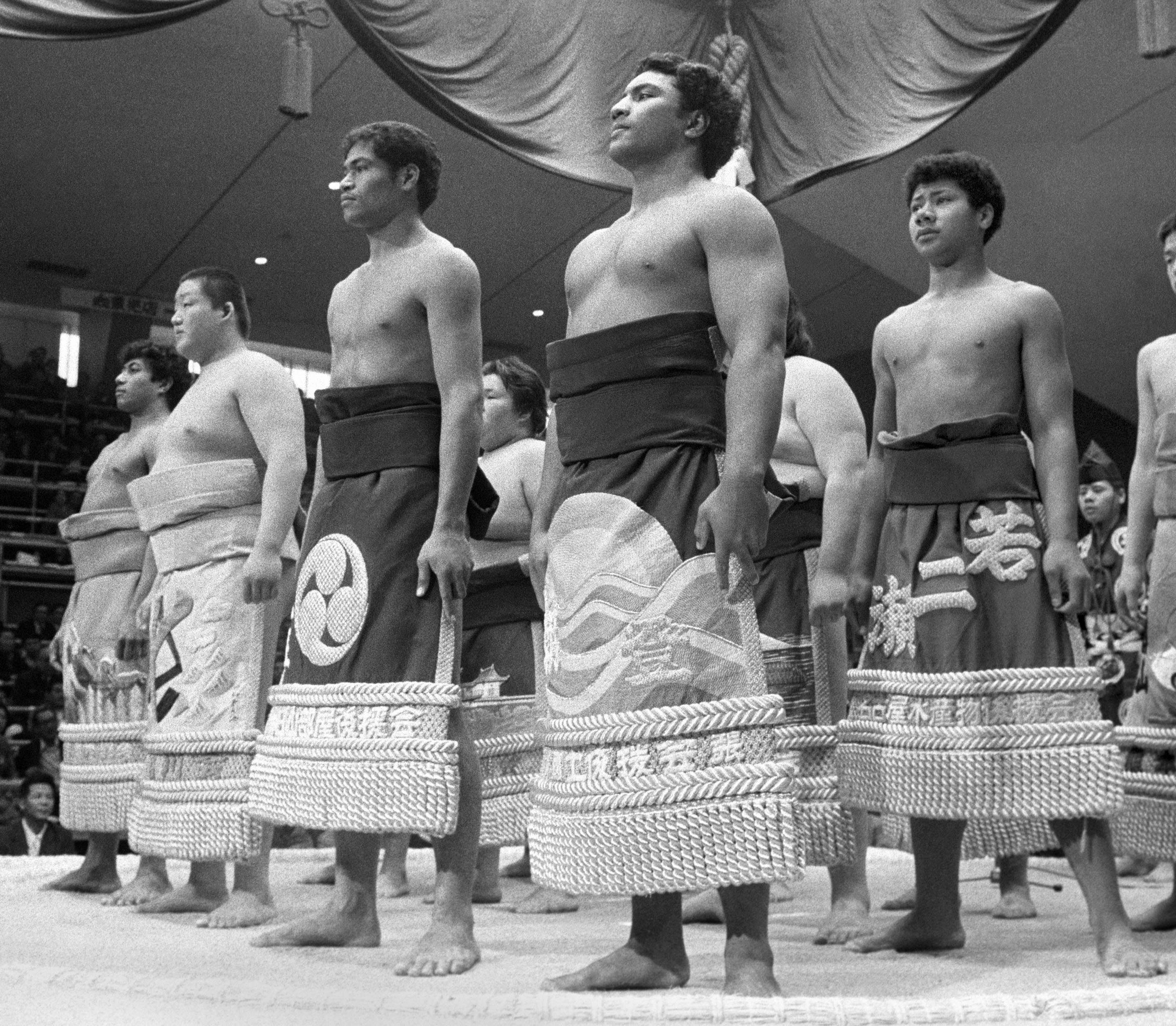 the origin and history of sumo wrestling Sumo wrestling history including origin, facts, images, and current rules for sumo wrestling.
