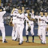 Swallows close in on Central League pennant