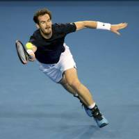 ATP expects Murray at season finale