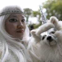 New York park goes to the dogs for Halloween parade