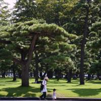 Tokyo's Imperial Palace grounds are peaceful oasis amid concrete jungle