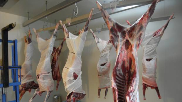 Deer and boar: from pests to the plate